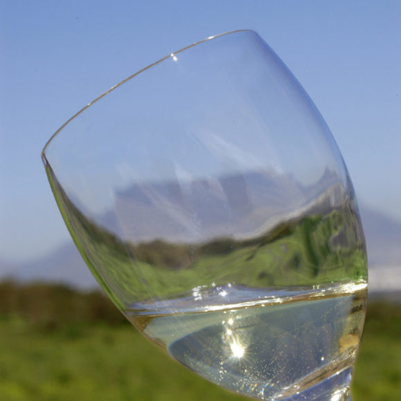 Celebrate South African Wine Month this April!