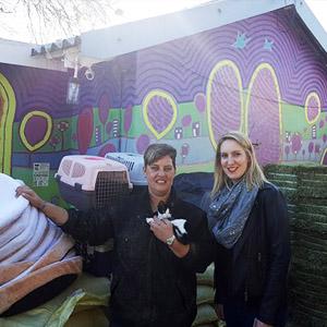 Knysna Fire Relief Fundraiser Feedback